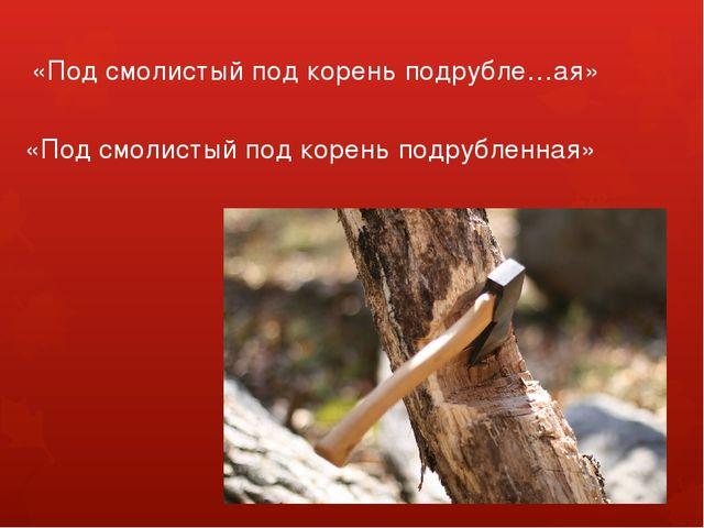 «Под смолистый под корень подрубле…ая» «Под смолистый под корень подрубленная»