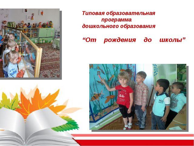 """Типовая образовательная программа дошкольного образования """"От рождения до шк..."""