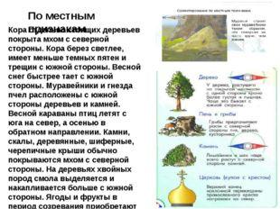По местным признакам Кора отдельно стоящих деревьев покрыта мхом с северной с