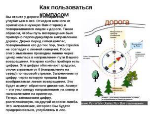 Как пользоваться компасом Вы стоите у дороги и собираетесь углубиться в лес.