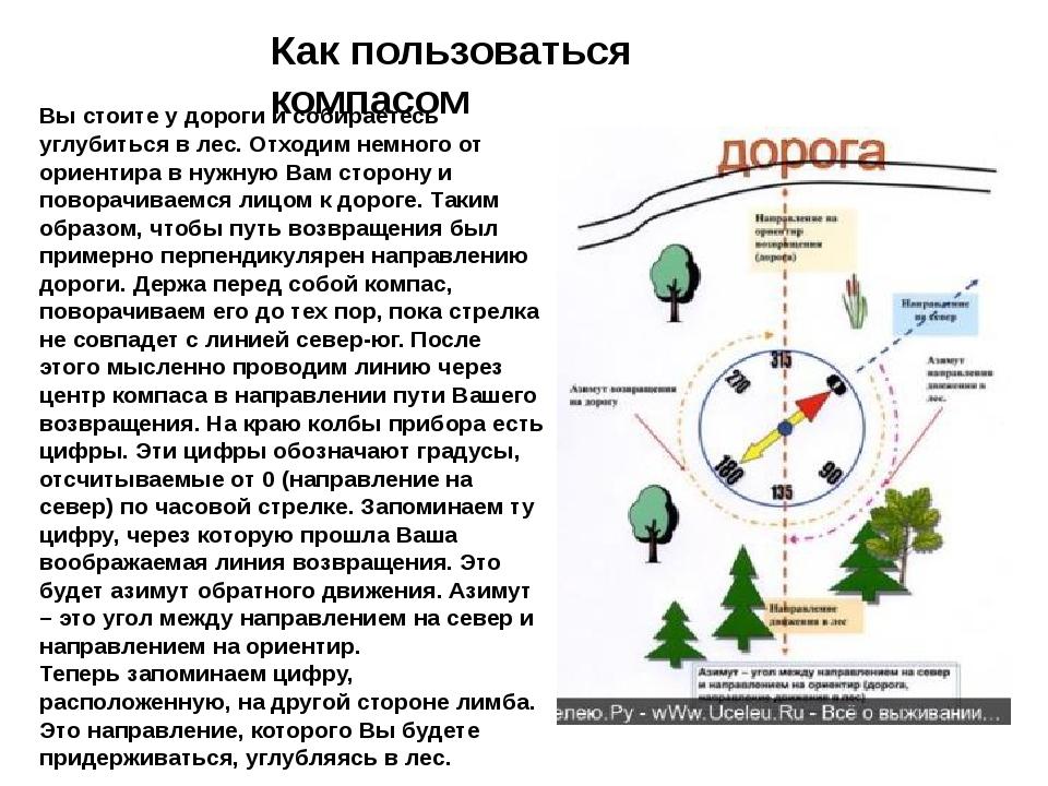 Как пользоваться компасом Вы стоите у дороги и собираетесь углубиться в лес....