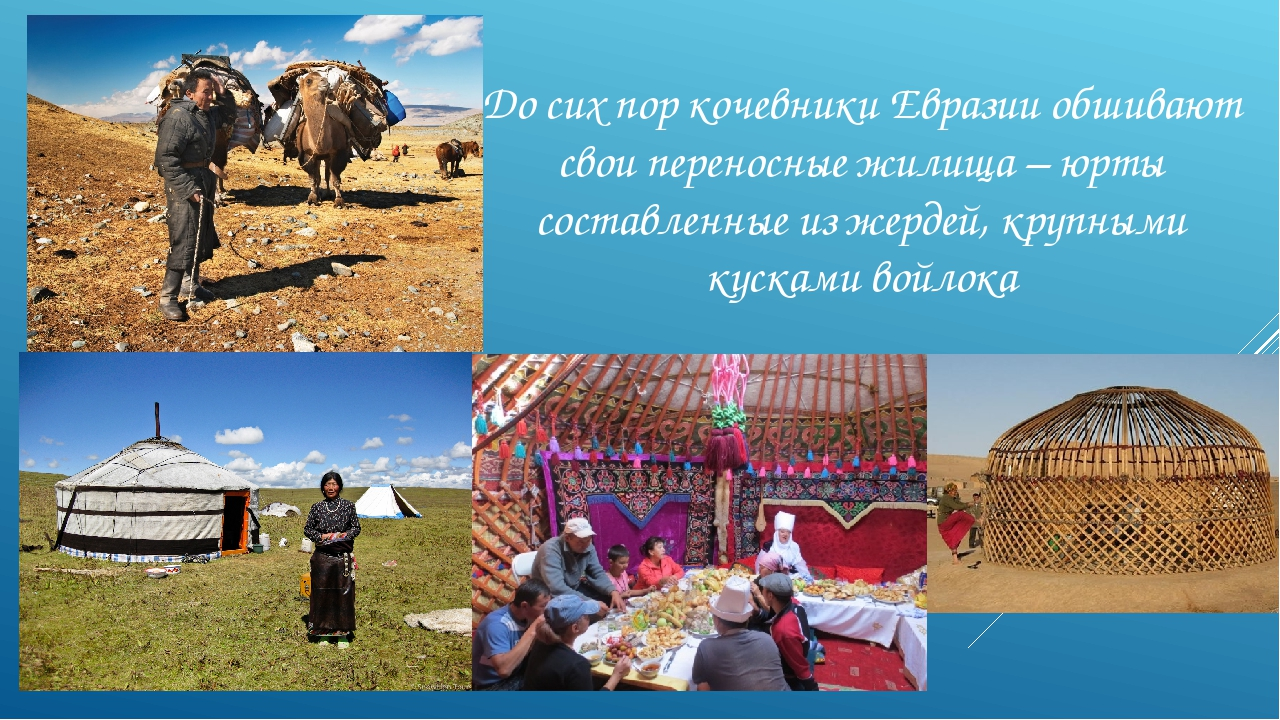 До сих пор кочевники Евразии обшивают свои переносные жилища – юрты составлен...