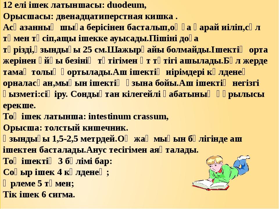 12 елі ішек латыншасы: duodeum, Орысшасы: двенадцатиперстная кишка . Асқазанн...
