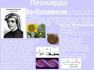 Леонардо Фибоначчи Его настоящее имя: Леонардо Пизанский (ок. 1170 года – ок