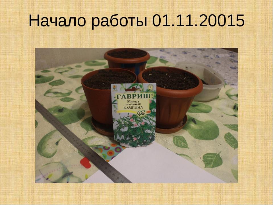 Начало работы 01.11.20015