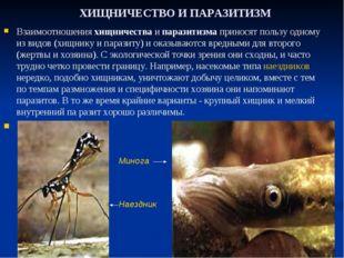 ХИЩНИЧЕСТВО И ПАРАЗИТИЗМ Взаимоотношения хищничества и паразитизма приносят п