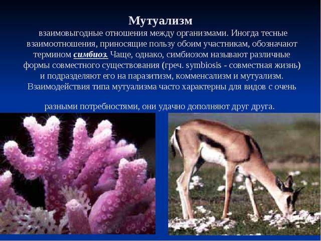 МУТУАЛИЗМ Мутуализм взаимовыгодные отношения между организмами. Иногда тесные...