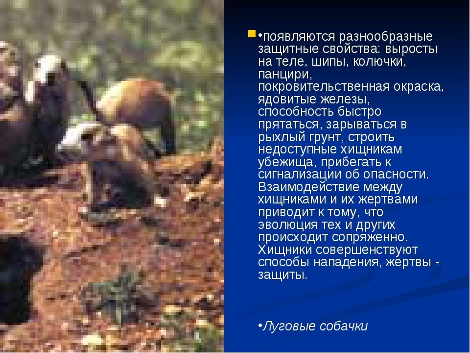 Однако и у жертв в процессе эволюции появляются разнообразные защитные свойс...
