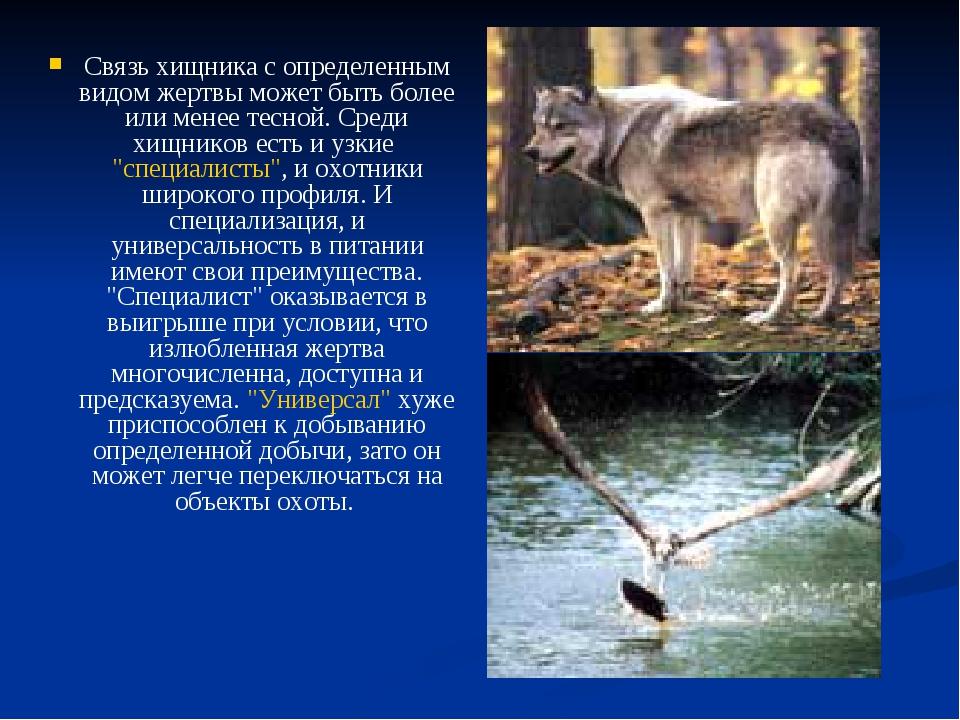 Связь хищника с определенным видом жертвы может быть более или менее тесной....