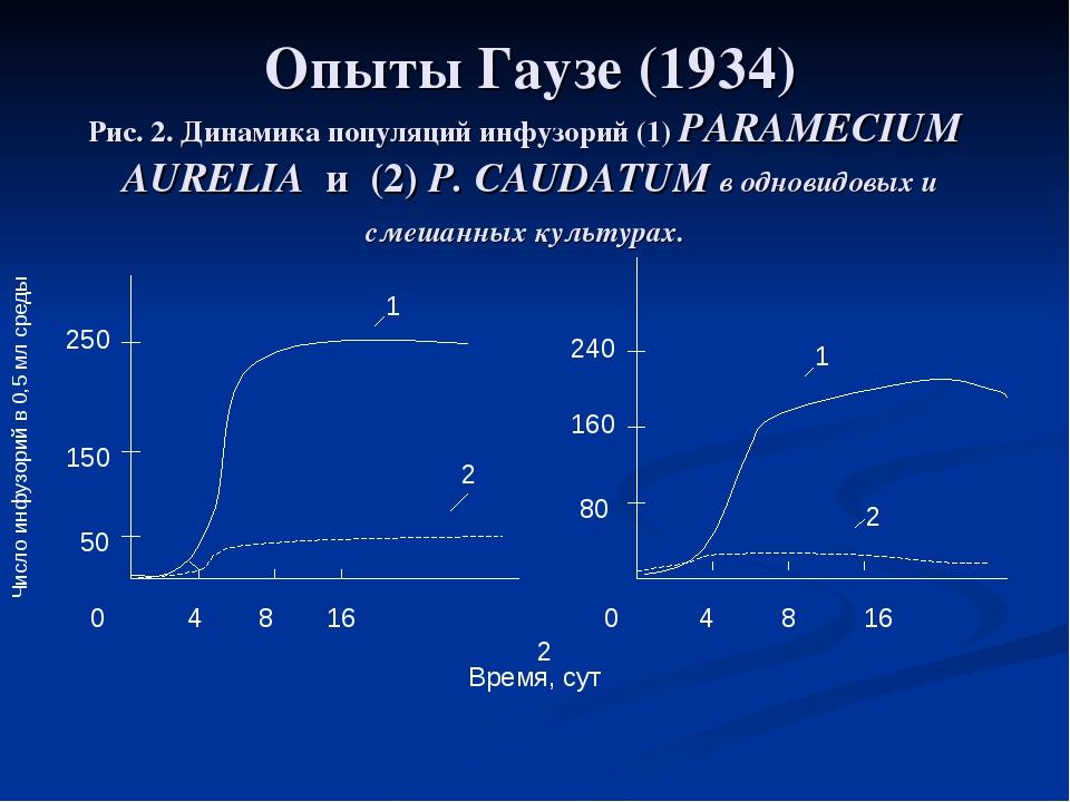 Опыты Гаузе (1934) Рис. 2. Динамика популяций инфузорий (1) PARAMECIUM AURELI...