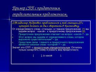 Пример СПП с придаточным определительным предложением. (1)Владимир Андреевич