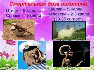 Смертельная доза никотина Птице - 0 капель. Собаке - ½ капли Кролик – ¼ капли