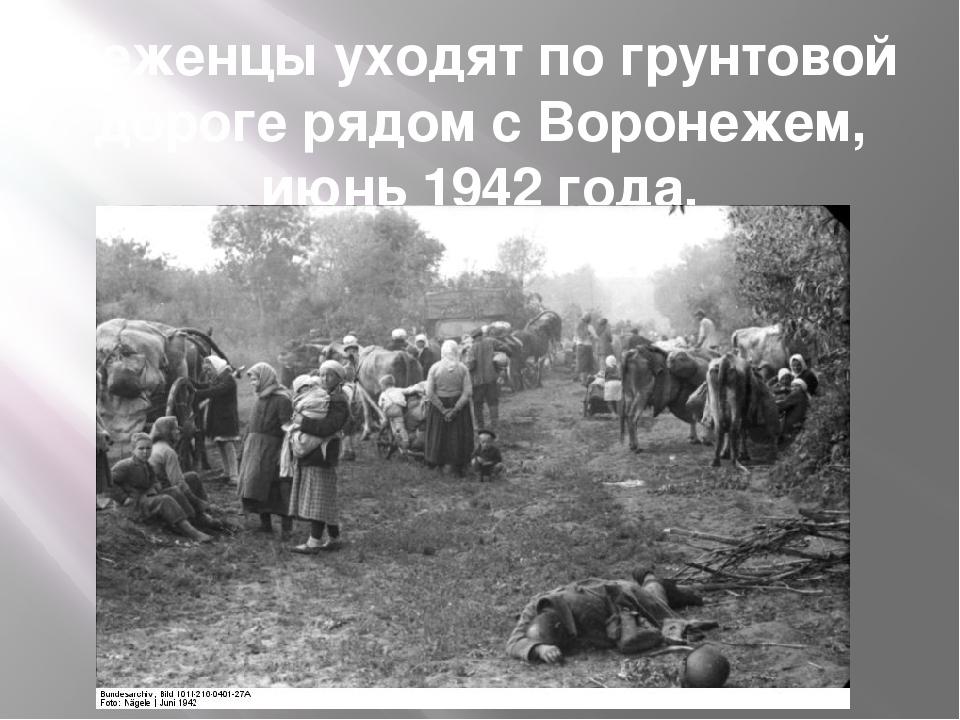 Беженцы уходят по грунтовой дороге рядом с Воронежем, июнь 1942 года.