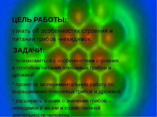 ЦЕЛЬ РАБОТЫ: узнать об особенностях строения и питании грибов -невидимок. З