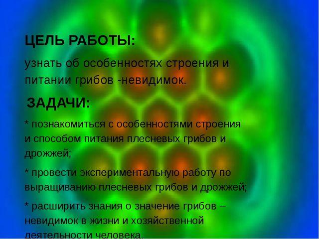 ЦЕЛЬ РАБОТЫ: узнать об особенностях строения и питании грибов -невидимок. З...