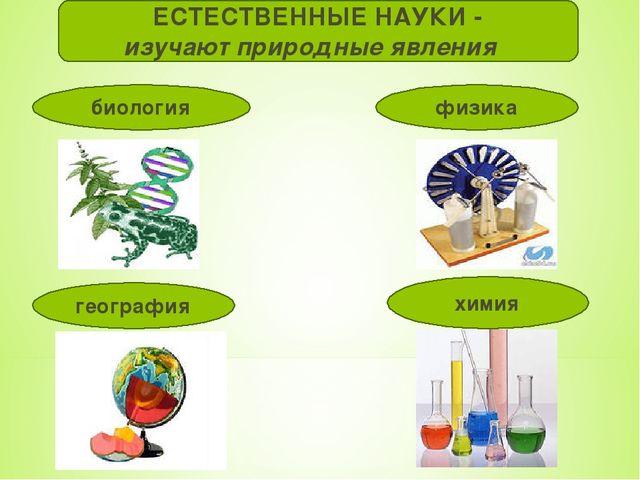 ЕСТЕСТВЕННЫЕ НАУКИ - изучают природные явления биология география химия физика