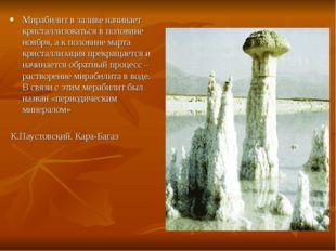 Мирабилит в заливе начинает кристаллизоваться в половине ноября, а к половине
