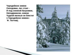 Чародейкою зимою Околдован, лес стоит - И под снежной бахромою, Неподвижною