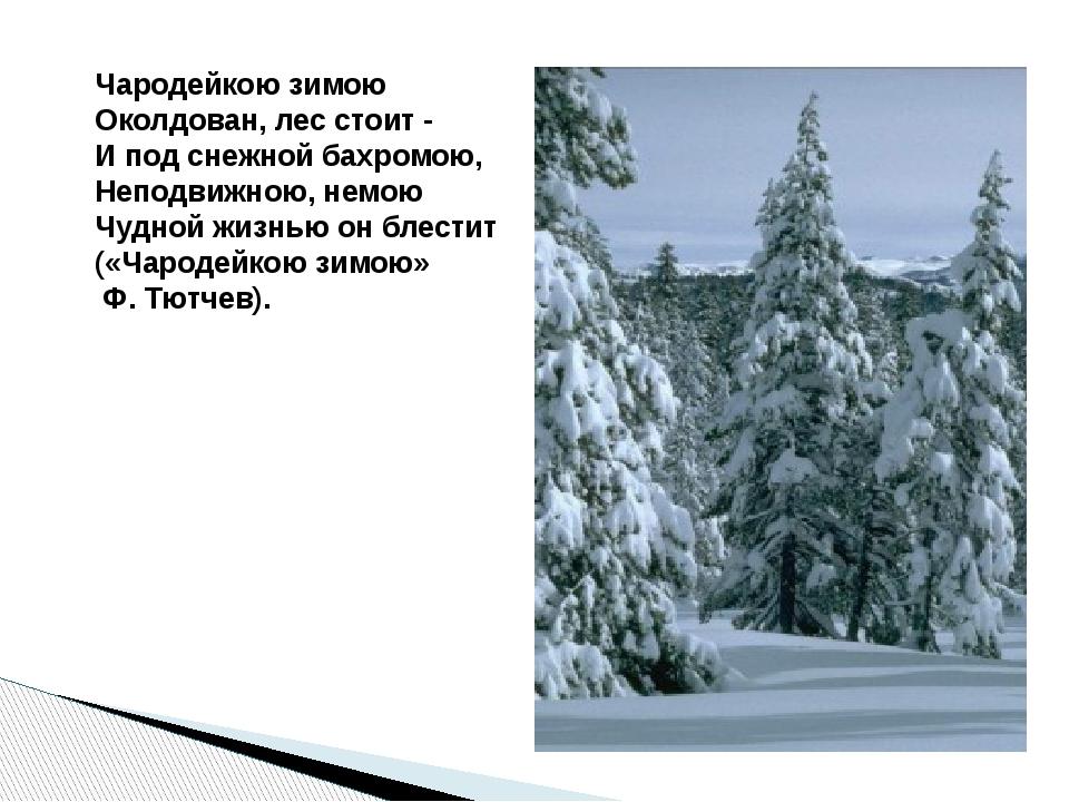 Чародейкою зимою Околдован, лес стоит - И под снежной бахромою, Неподвижною...