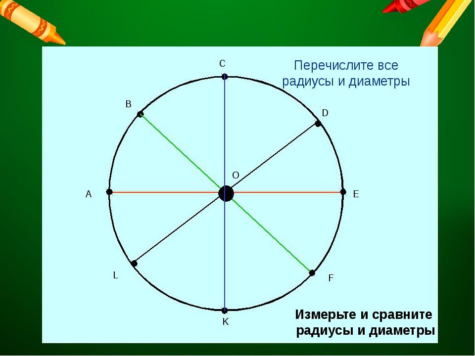 Измерьте и сравните радиусы и диаметры
