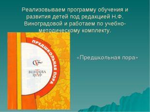 Реализовываем программу обучения и развития детей под редакцией Н.Ф. Виноград