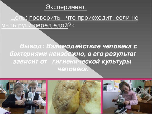 Эксперимент. Цель: проверить , что происходит, если не мыть руки перед едой?...