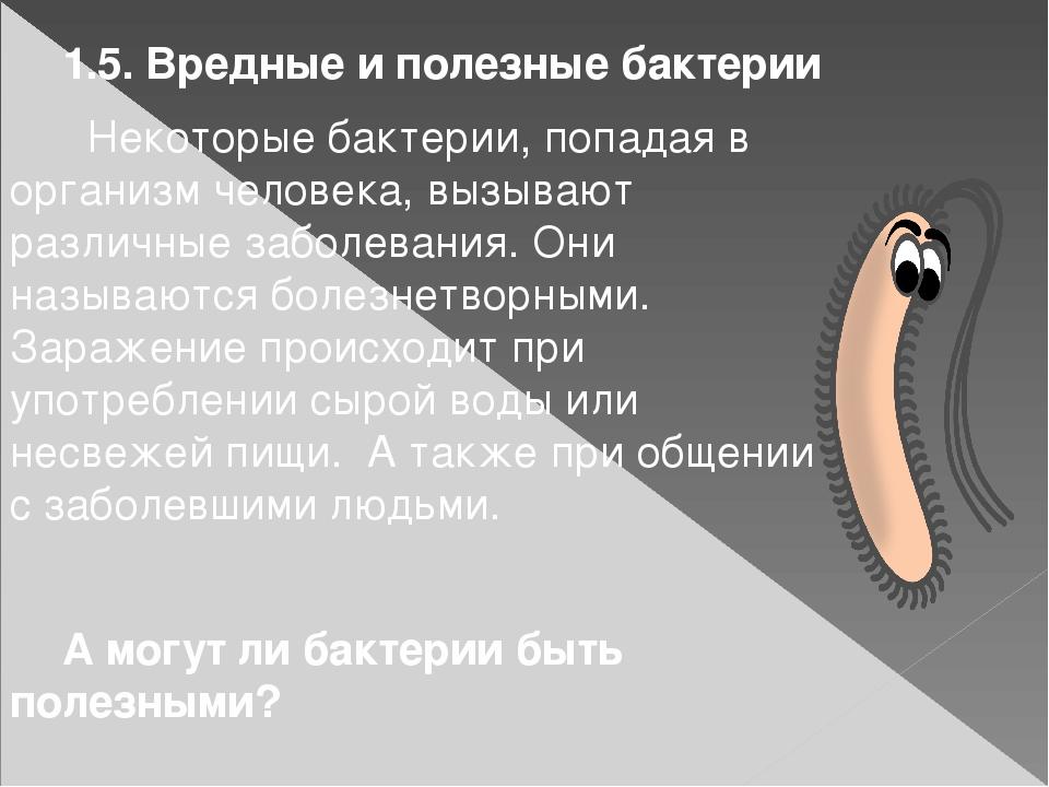 1.5. Вредные и полезные бактерии  Некоторые бактерии, попадая в организм че...