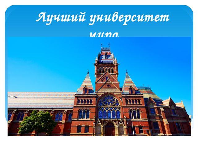 Лучший университет мира