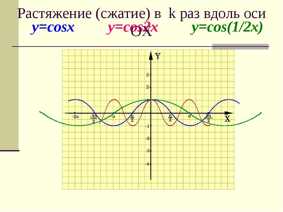 y=cosx y=cos2x y=cos(1/2x) Растяжение (сжатие) в k раз вдоль оси OХ