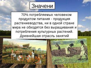 Значение 70% потребляемых человеком продуктом питания - продукция растениевод