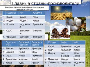 Главные страны-производители Мировые лидеры в производстве некоторых техничес