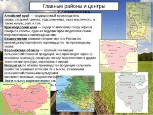 Главные районы и центры производства Алтайский край— традиционный производит