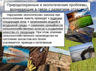 Природоохранные и экологические проблемы, возникающие в связи с развитием отр