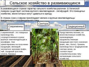 Сельское хозяйство в развивающихся странах В развивающихся странах характер с