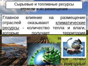 Сырьевые и топливные ресурсы отрасли и их размещение Главное влияние на разме