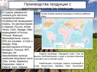 Производства продукции с распределением по главным географическим регионам Ро