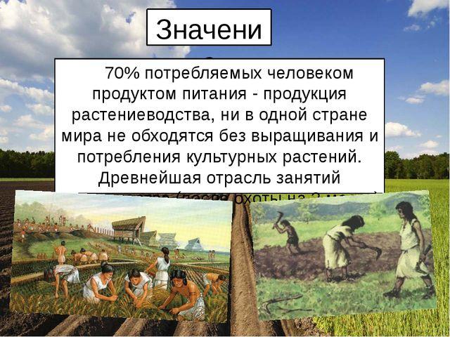 Значение 70% потребляемых человеком продуктом питания - продукция растениевод...