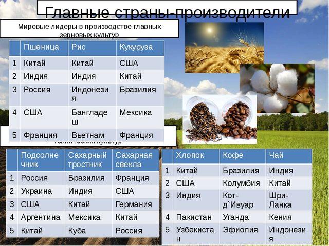 Главные страны-производители Мировые лидеры в производстве некоторых техничес...