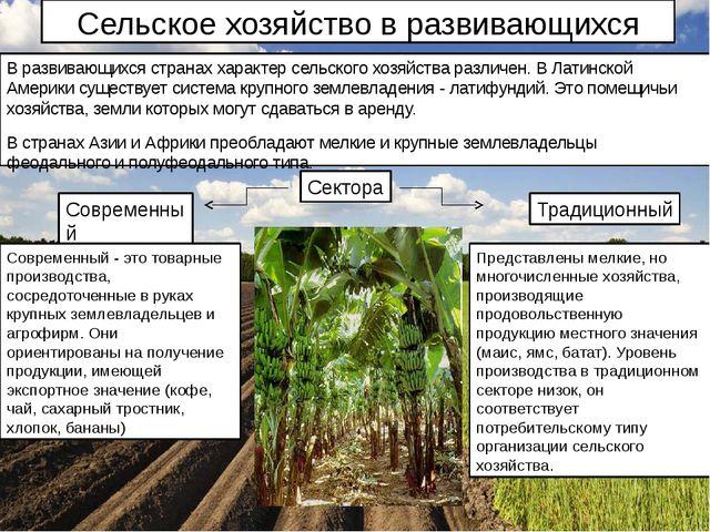 Сельское хозяйство в развивающихся странах В развивающихся странах характер с...