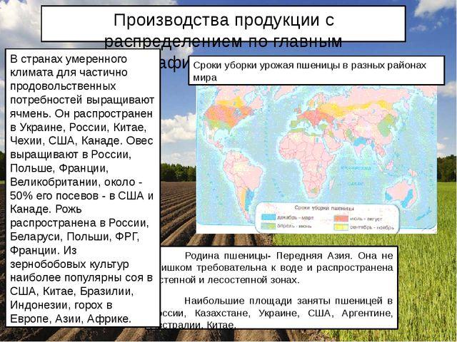 Производства продукции с распределением по главным географическим регионам Ро...