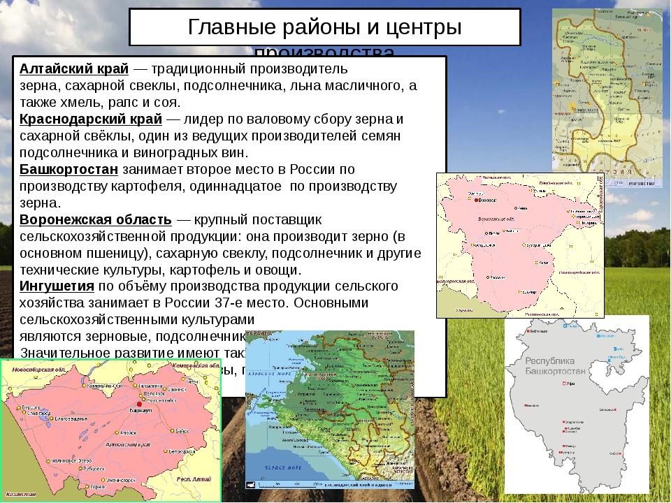 Главные районы и центры производства Алтайский край— традиционный производит...