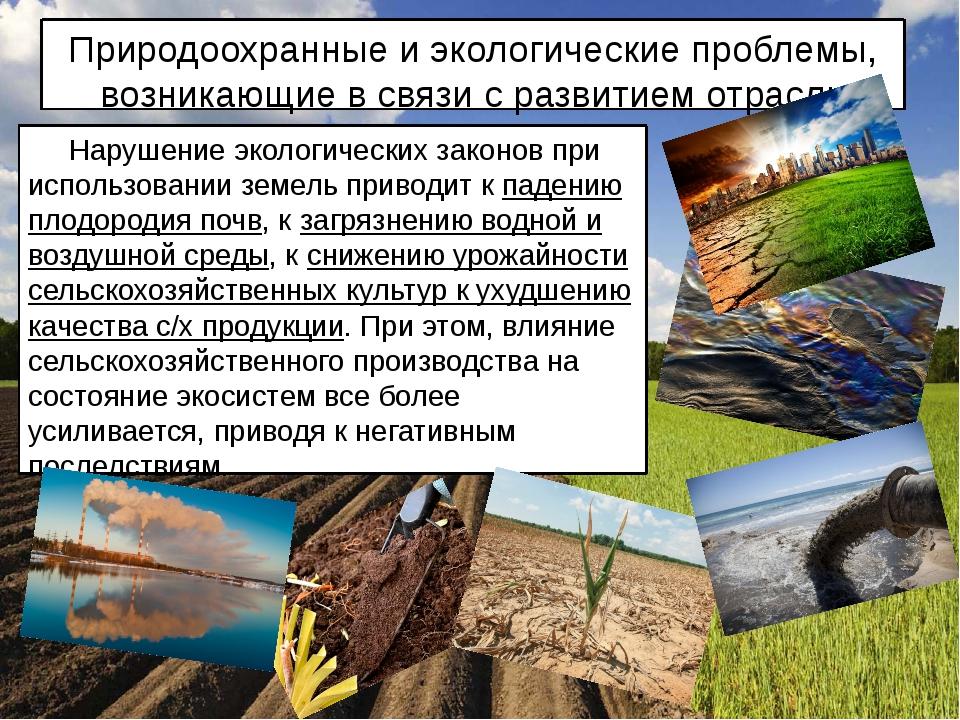 Природоохранные и экологические проблемы, возникающие в связи с развитием отр...