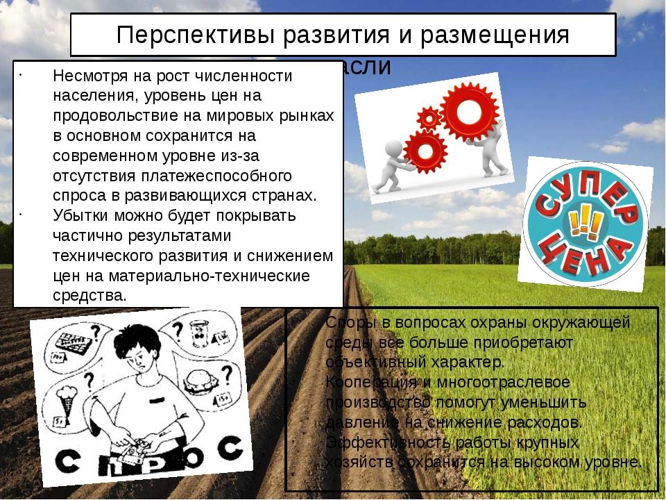 Перспективы развития и размещения отрасли Споры в вопросах охраны окружающей...