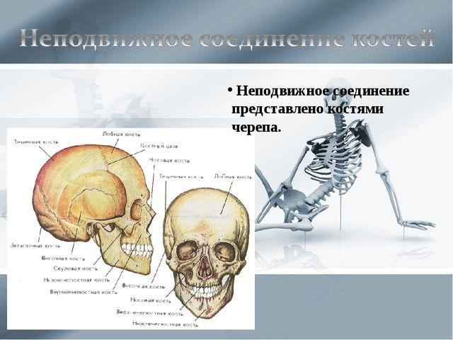 Неподвижное соединение представлено костями черепа.