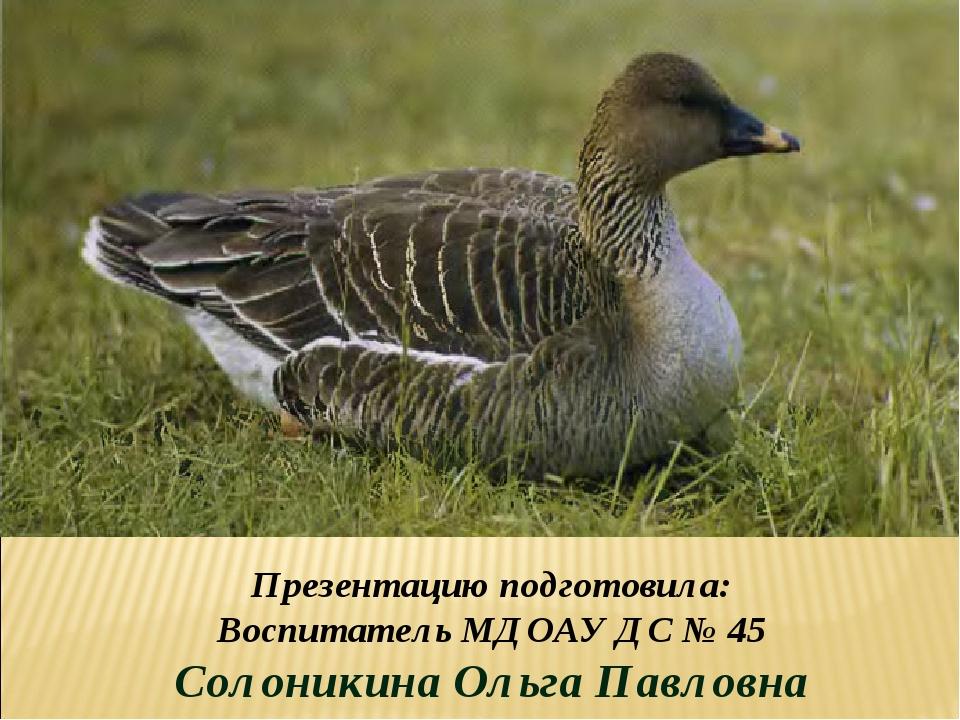 Презентацию подготовила: Воспитатель МДОАУ ДС № 45 Солоникина Ольга Павловна