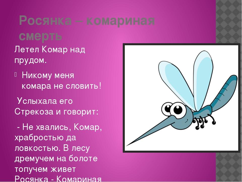 Росянка – комариная смерть Летел Комар над прудом. Никому меня комара не слов...