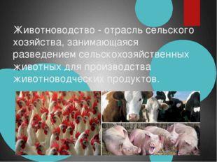 Животноводство- отрасльсельского хозяйства, занимающаяся разведениемсельск