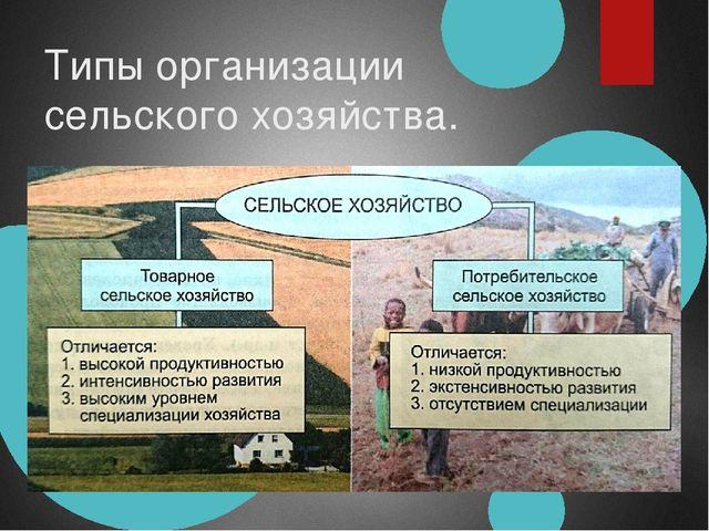 Типы организации сельского хозяйства.