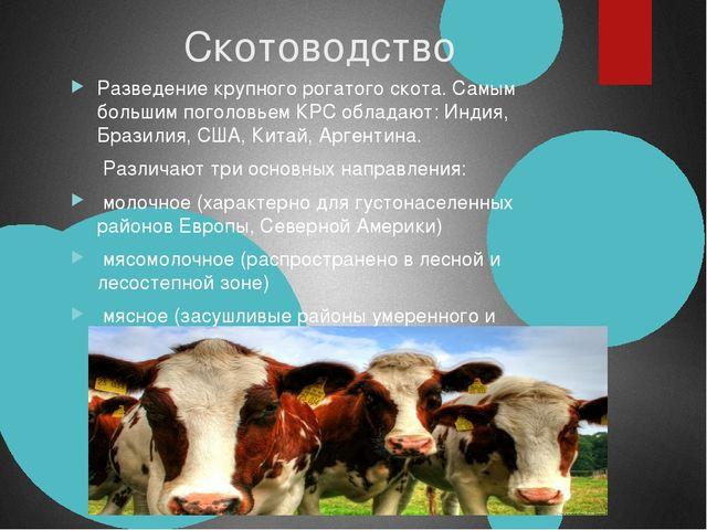Скотоводство Разведение крупного рогатого скота. Самым большим поголовьем КР...