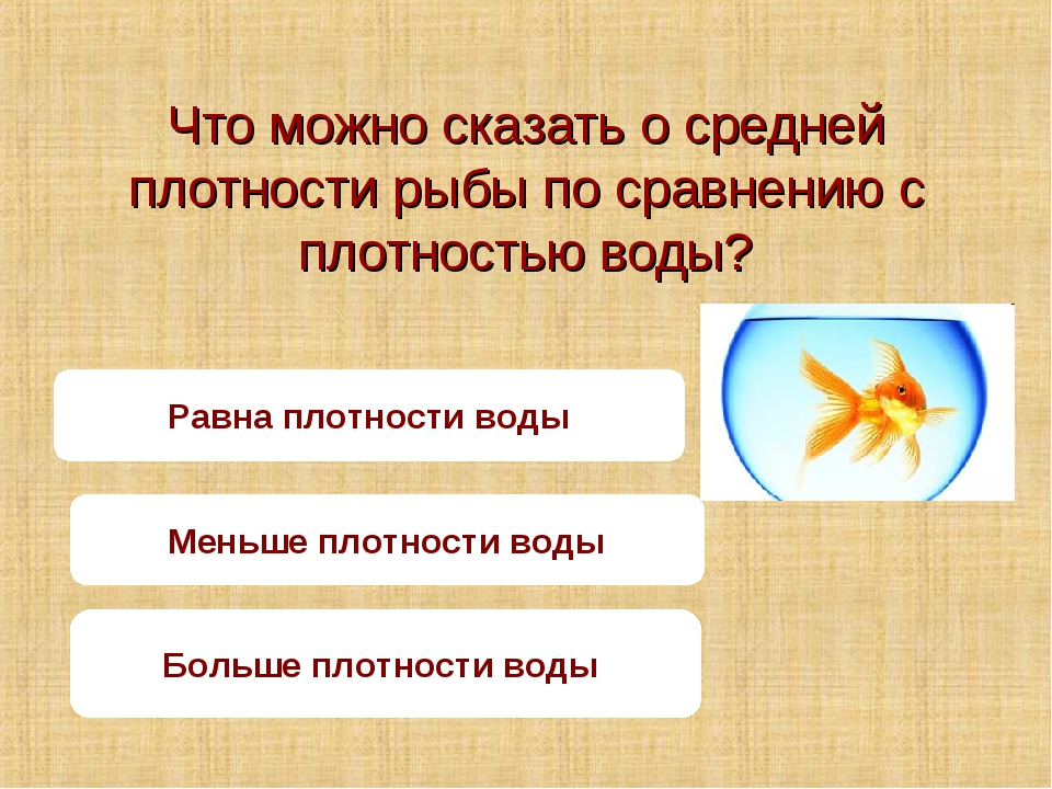 Что можно сказать о средней плотности рыбы по сравнению с плотностью воды? Ра...